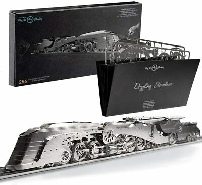 3D Model Kit Vintage Scale Model Train Kit Dazzling Steamliner • 189€