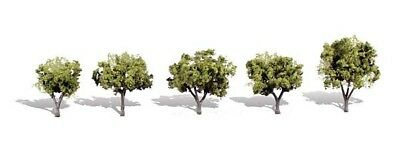 1.25in.-2in. Early Light - Pack Of 5 - OO/HO Trees Woodland Scenics TR3546 • 19.69€